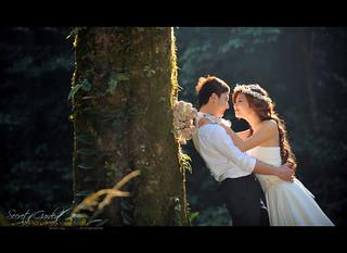 Love romance #7 Explorer