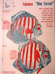 "Satirical publication ""Discus"" in NMNH"