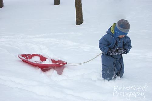 卢卡斯和红色雪橇