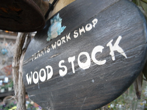 WOOD STOCK FUSSA