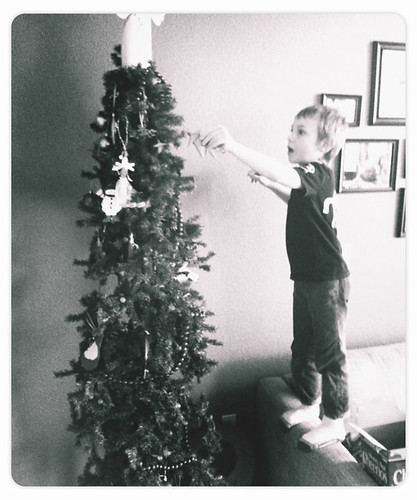 Taking down Christmas