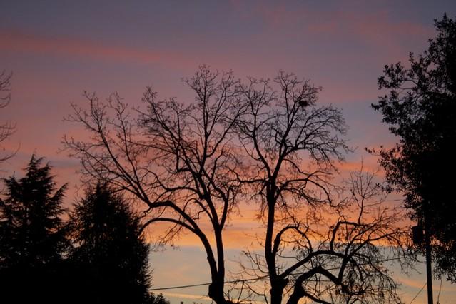 xmas-sunrise2.jpg