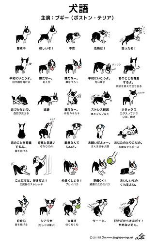 DOGGIE LANGUAGE - Japanese version