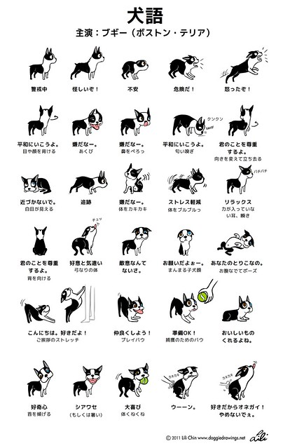 DOGGIE LANGUAGE - Japanese version