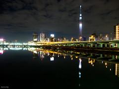 2011 Skytree