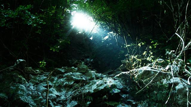 自主配給で劇場公開、国際映画祭への出品を目指す!映画「東京の光」制作プロジェクト