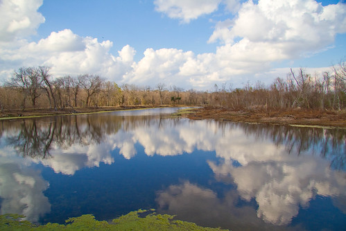 Elm Lake reflection