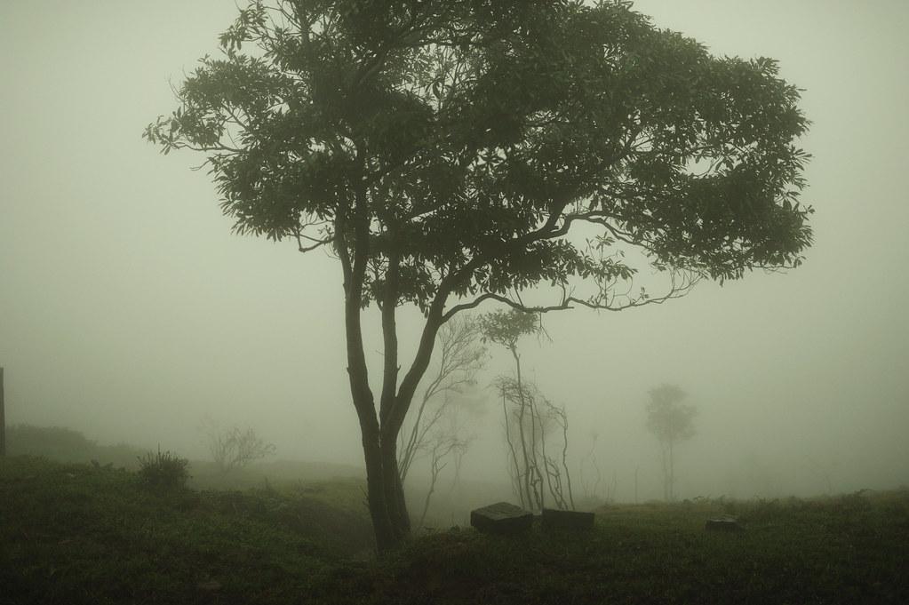 20120112pic03