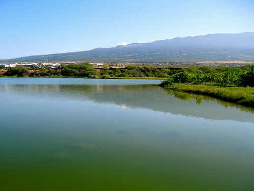 'Aimakapā Fishpond, at Kaloko