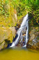 Cachoeira no Horto(Rio de Janeiro)
