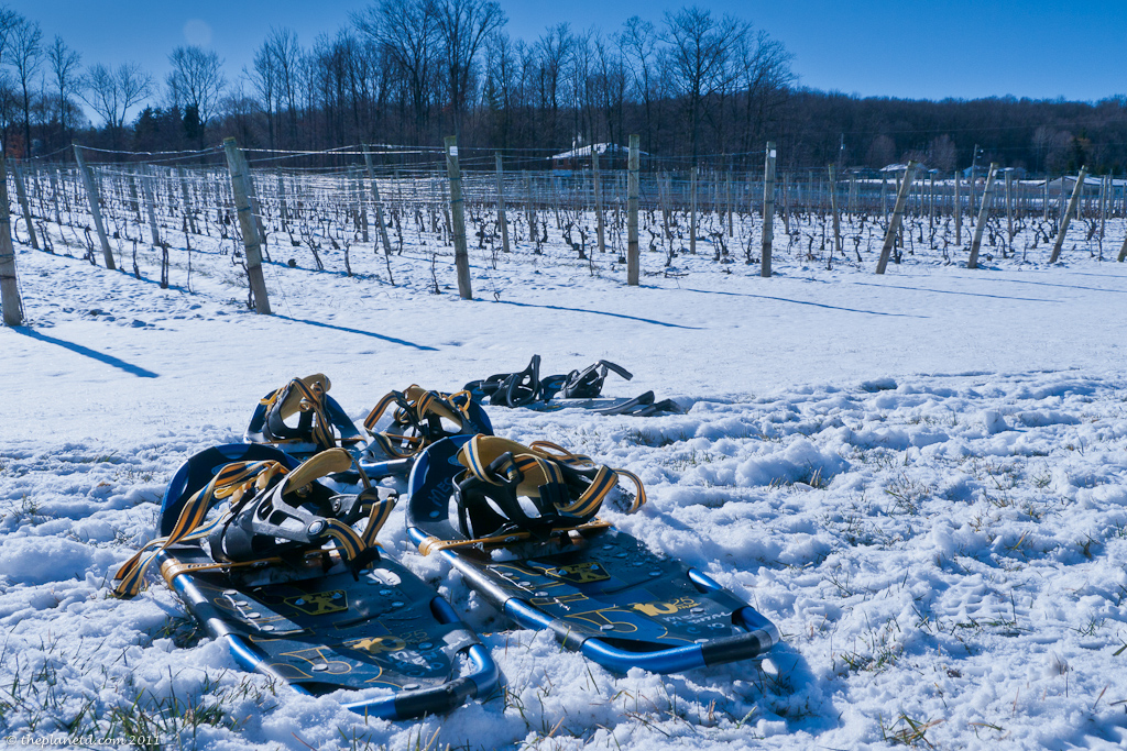 niagara winery winter snowshoes