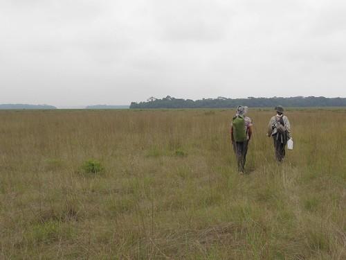 On the trail crossing Boa Savana