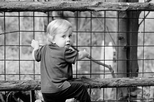 EmyAsh-zoo-edit-bw-7948-low
