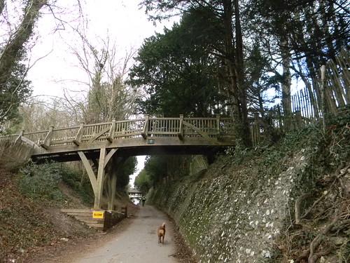 Bridges near Polesden Lacey