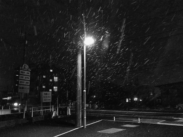 粉雪舞う夜
