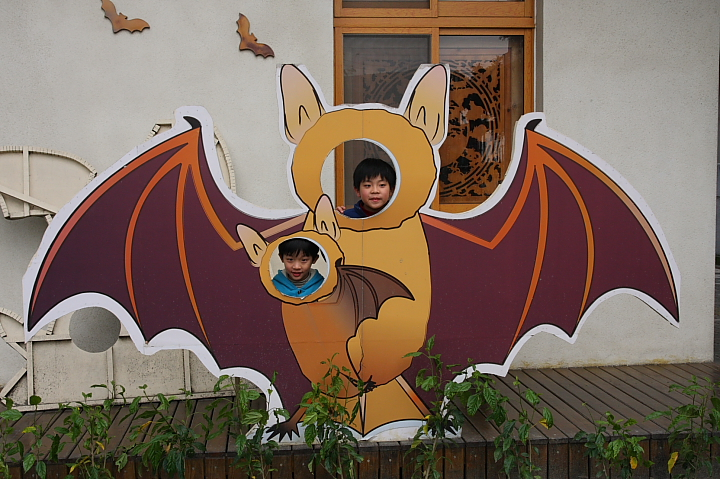 雲林水林黃金蝙蝠生態館(誠正國小)0037