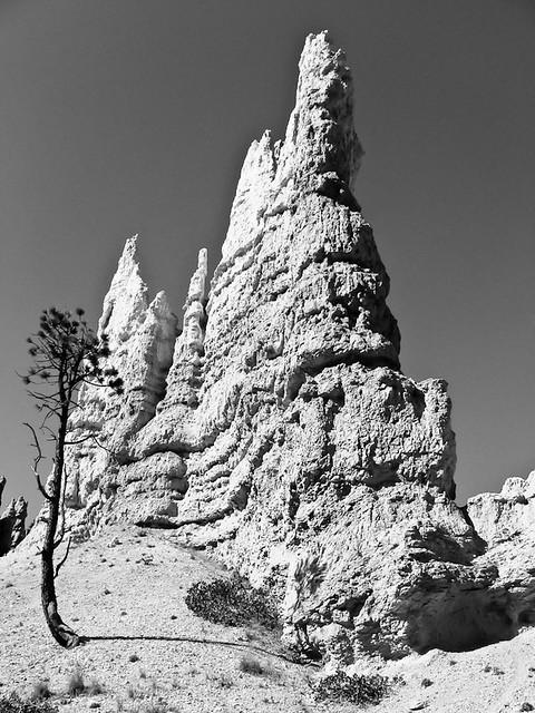 Bryce Canyon National Park, Utah, 2008, par Franck Vervial
