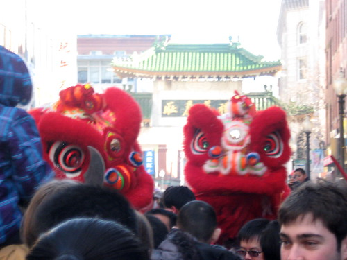 Year of the Dragon 7