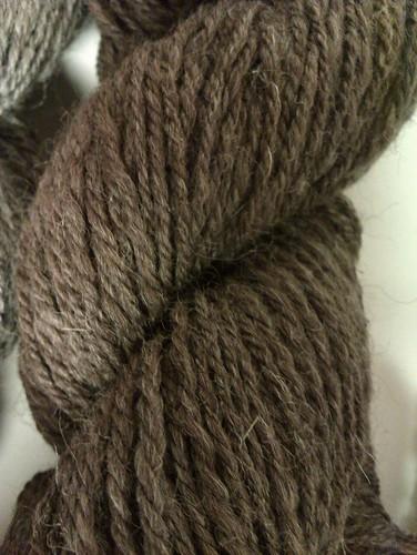 Shetland 4 brown 1