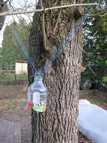 Picavet Juice bottle