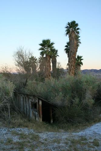 Ibex Springs