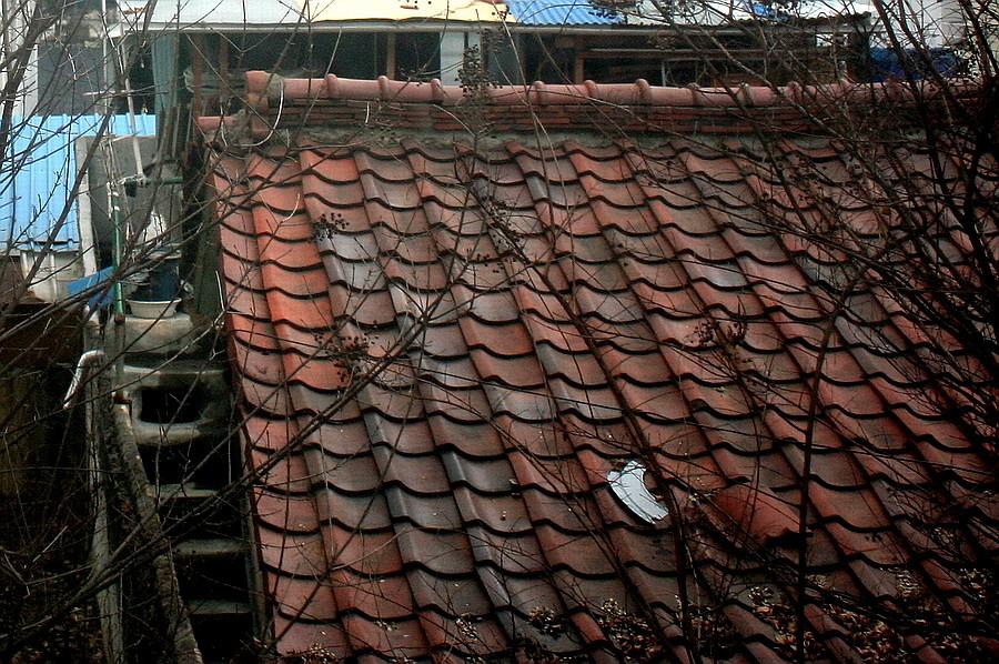 Roof (Feb 6, 5 pm