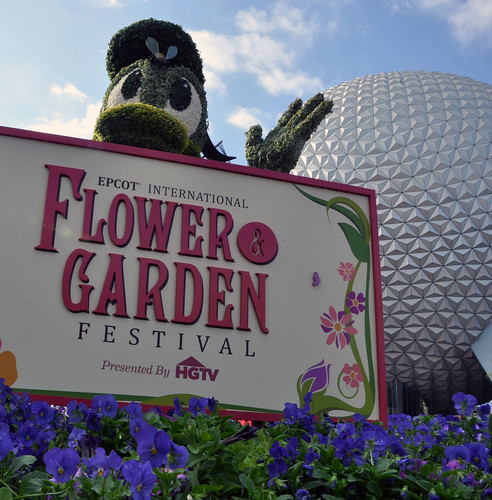 Donald at Flower and Garden Festival