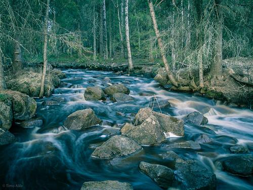 nature water creek forest finland river evening spring rocks may rapid raahe pattijoki ylipää lasikangas pihlajakankaantie