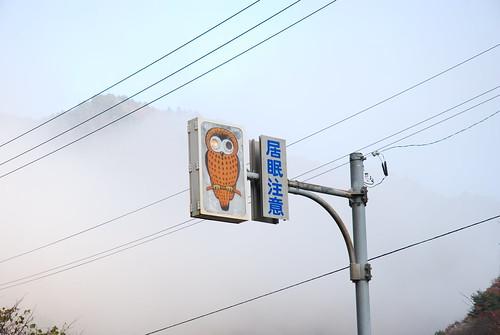 国道41号線 岐阜県内の居眠注意ふくろう
