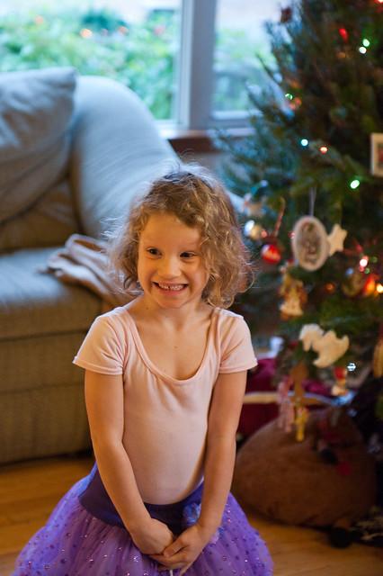 11-27-11_ChristmasTree_036