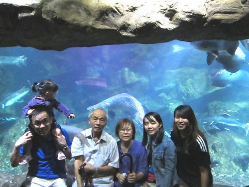 sentosa underwater world