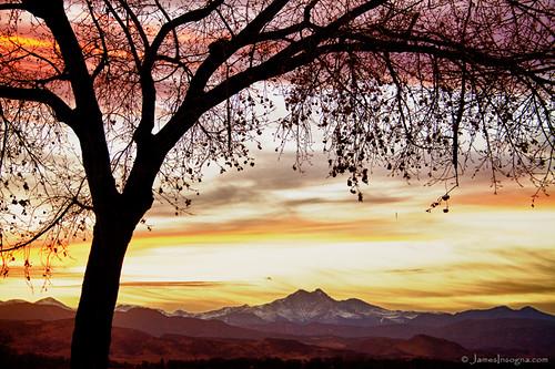 sunset tree colorado colorful view fineart large twinpeaks rockymountains longspeak frontrange stockimages mountmeeker bouldercounty canvasart jamesboinsogna coloradonaturelandscapephotographyprints
