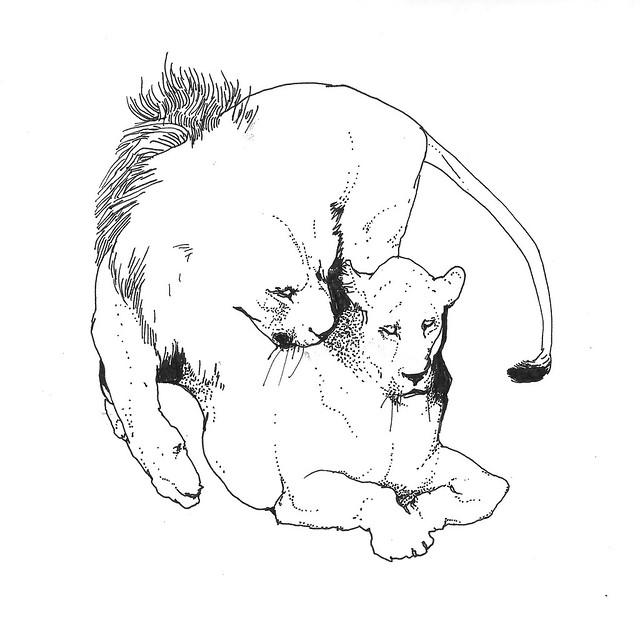 кэт лав