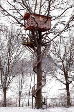 treehouse_009