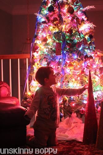 Christmas Trees (2 of 5)
