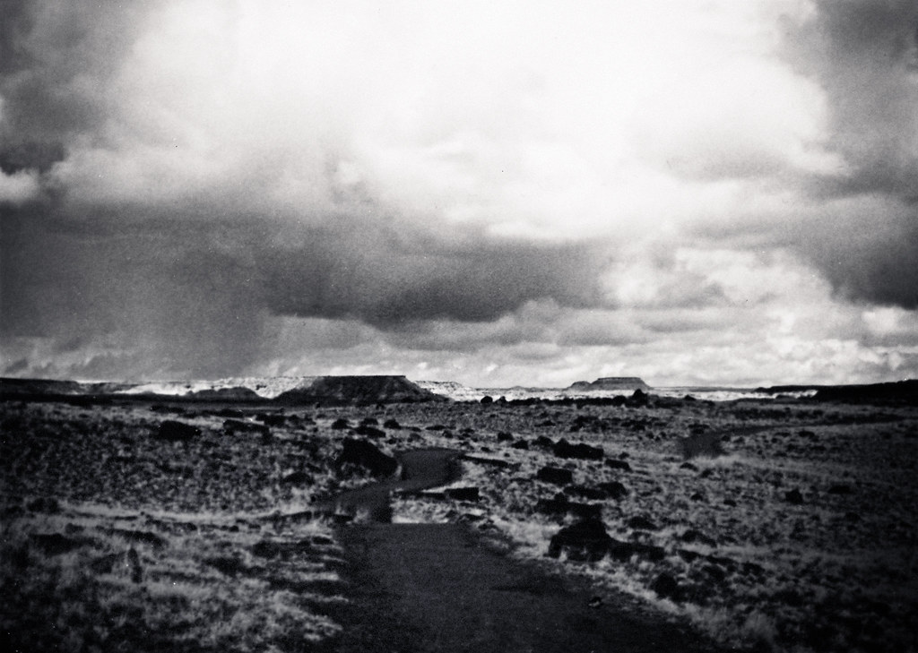 1990, Painted Desert/Petrified Forest