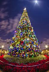 [フリー画像素材] 行事・イベント, クリスマス, クリスマスツリー ID:201112181600