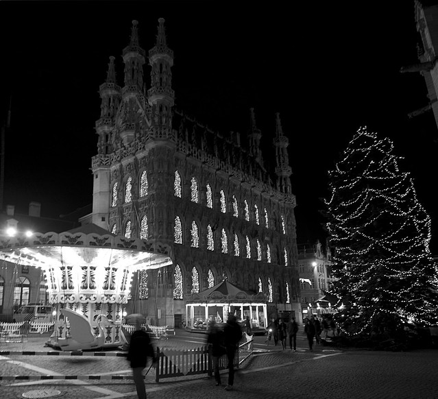 Hôtel de ville de Leuven