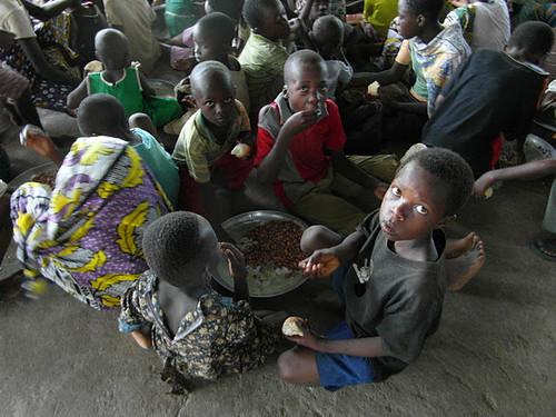 Feeding Station, Kikambala