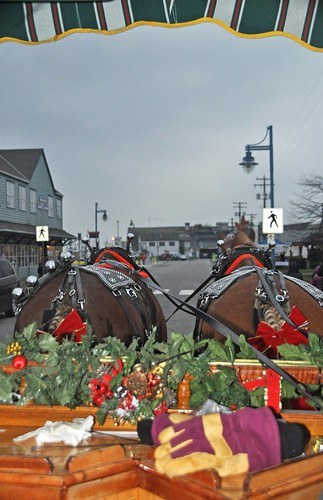 Carriage Ride Through Steveston