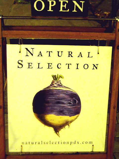 Natural Selection Sandwich Board