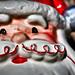 I Have Santa's Head