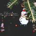 Merry Christmas by Karen Nocita
