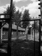 Locked-in