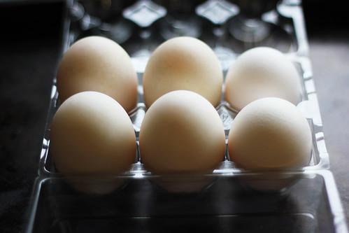 poached duck egg / black pudding / grlled portobello mushroom / horseradish cream