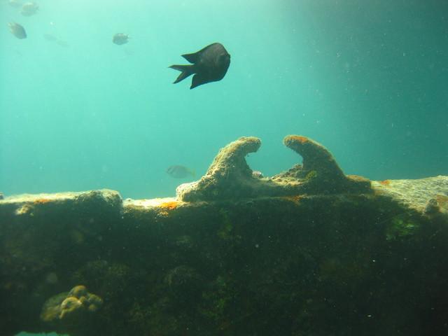 East Tangat Wreck