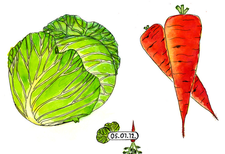 Flash mob vegetables 2.
