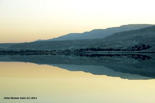Dead sea # ים המוות