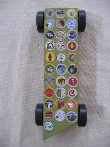 Merit Badge Sash