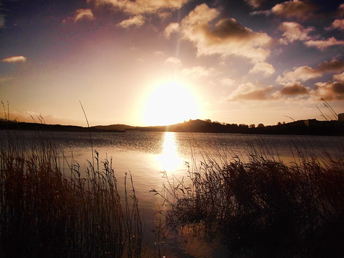 Lough Egish Winter Morning